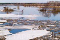 В Кировской области 5-летняя девочка провалилась под лед и утонула