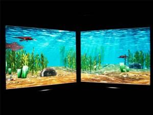 В Музее естественной истории Татарстана появился новый интерактивный экспонат