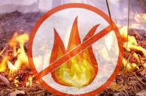 В Татарстане вводится особый противопожарный режим