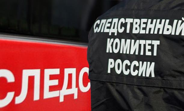 В Казани на 14-летнюю девочку упало дерево, возбуждено уголовное дело