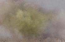 Сотни человек погибли в результате авиаудара коалиции по складу химоружия в Сирии