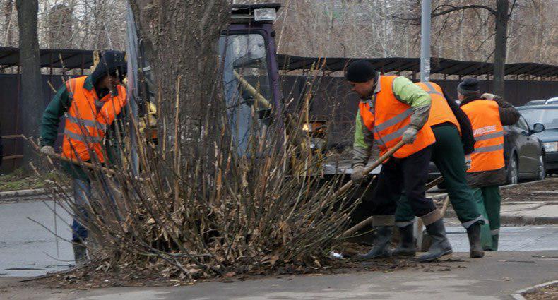22 апреля в  парках и скверах Кировского и Московского районов пройдут субботники
