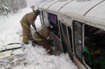 В Коми столкнулись автобус с пассажирам и грузовик, пострадали около 40 человек
