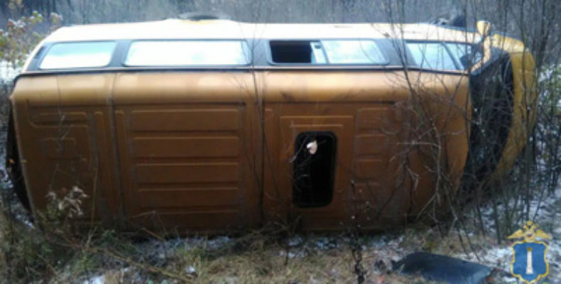 В Ульяновской области маршрутка опрокинулась в кювет, пострадали 5 человек