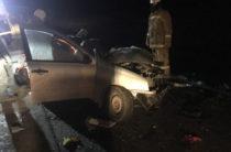 В Самарской области в крупном ДТП погибли три человека