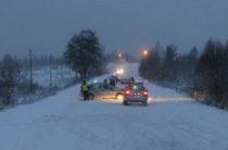 В Кемеровской области водитель BMW сбил женщину с четырьмя детьми, одна девочка погибла