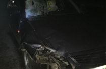 В Марий Эл женщина погибла под колесами «Лады Приоры»