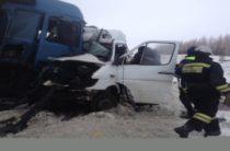 В Ульяновской области столкнулись фура и «Газель», есть погибший