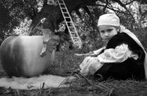 Фестивалю тюркского кино дан старт!