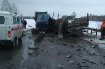 В Томской области столкнулись рейсовый автобус и грузовик, есть погибшие