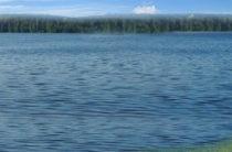 В реке Лена утонули четверо взрослых и трое маленьких детей