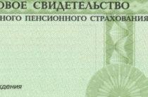 В России прекращают выдавать бумажные СНИЛС