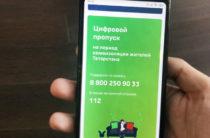 Официально: В Татарстане отменили цифровые пропуска