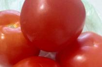 В России временно запретили поставки томатов и яблок из Азербайджана