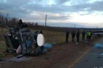 В Оренбургской области столкнулись «Мазда» и автобус, три человека погибли и двое пострадали
