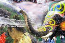 В Мьянме на водном фестивале погибли около 300 человек