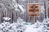 Проект из Татарстана вышел в лидеры голосования национальной премии «Хрустальный компас»