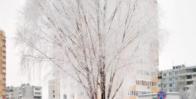 Заморозки в Казани. Ночью похолодает до -21 градуса