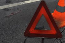 В Ульяновской области в ДТП на трассе погибли два человека, еще один в больнице