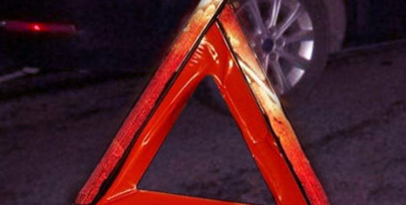 В Башкортостане водитель мотоблока погиб, после того как в него врезалась «Хонда»