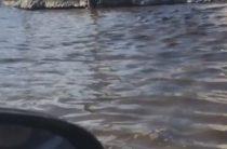 «Море, море»: Салават спел песню про затопленные улицы Самары