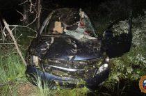 В Марий Эл на трассе водитель на иномарке сбил лося, погибли два человека