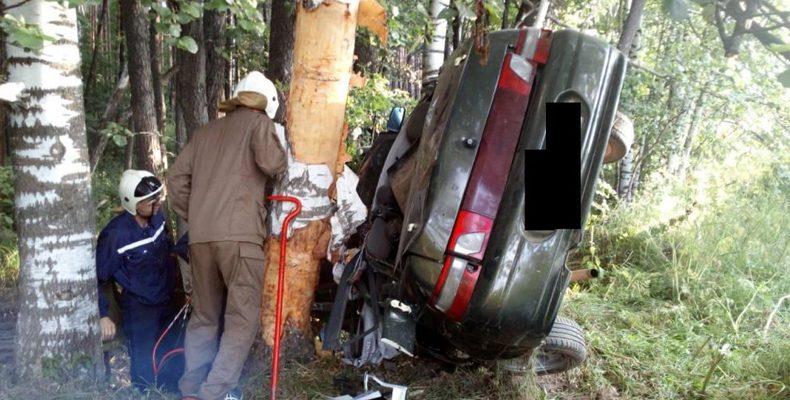 Смертельное ДТП в Марий Эл: «Лада» вылетела с дороги и застряла между деревьями