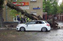 Ураган в Москве унес жизни по меньшей мере 11 человек
