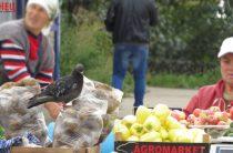 В предстоящую субботу в Казани стартуют еженедельные сельхоярмарки