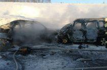 7 человек погибли в ДТП на трассе в Воронежской области