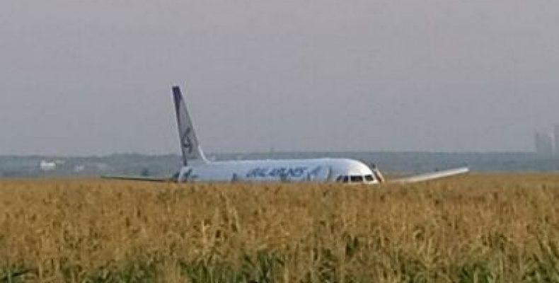 В Подмосковье самолет Airbus A321 с 226 пассажирами на борту совершил жесткую посадку в кукурузном поле