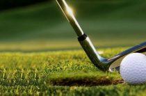 В школах начнут обучать гольфу!