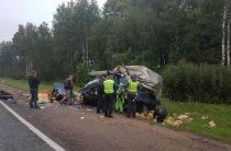 В Смоленской области при столкновении двух грузовиков
