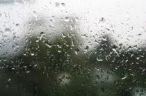 В Казани прогнозируется дождь с грозой