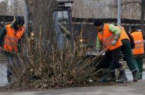 В Казани проведут уборку на территориях озера Харовое и сквера «Маяк»