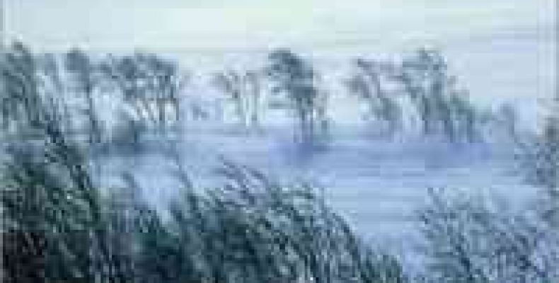 Из-за сильного ветра и метели в Татарстане без электричества остались 13 сел
